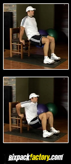 Bench Dips Best Triceps Exercises