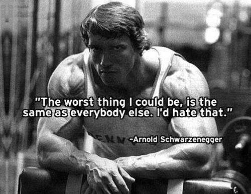 Arnold Motivational Wallpapers: Arnold Schwarzenegger Motivational Quotes. QuotesGram